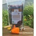Raisins Bio Sultanine, Nomade Palize, 500 Gr