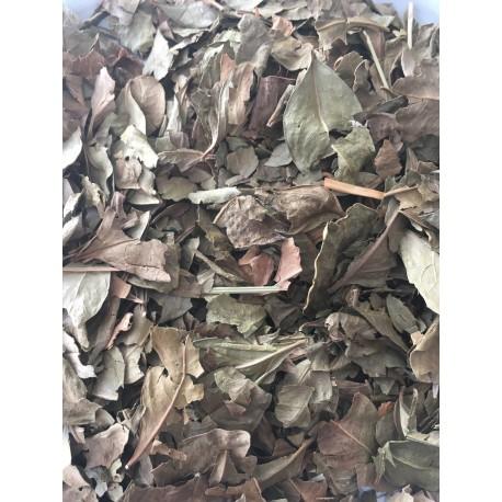 Henne naturel en feuilles, 100Gr